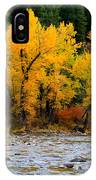 Autumn Beauty In Boise County IPhone Case