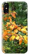 Autumn Begins At Breakheart Reservation IPhone Case