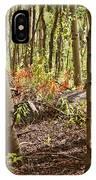 Autumn Begins IPhone Case