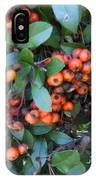 Autumn Berries In Michigan IPhone Case