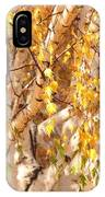Autumn Birch Leaves IPhone Case