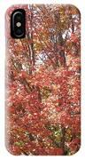 Autumn Blaze IPhone X Case