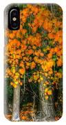 Autumn Breakout No.2 IPhone Case