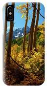 Autumn Brilliance 2 IPhone Case
