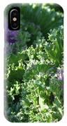 Autumn Cabbage IPhone Case