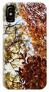 Autumn Chestnut Canopy   IPhone Case