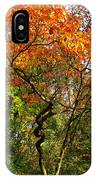 Autumn Color At Old Woman Creek 2 IPhone Case