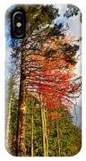 Autumn Color In The Trees IPhone Case