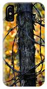 Autumn Colors 1 IPhone Case