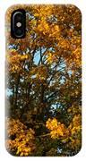 Autumn Colors 11 IPhone Case