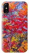Autumn Colors - 113 IPhone Case
