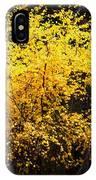 Autumn Colors 4 IPhone Case