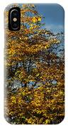 Autumn Colors 5 IPhone Case