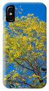 Autumn Colors Against The Sky IPhone Case