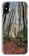 Autumn Colors In The Forrest IPhone Case