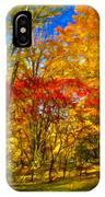 Autumn Cul-de-sac - Paint IPhone Case