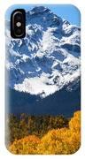 Autumn Curtains IPhone Case
