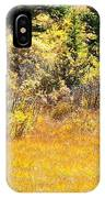 Autumn Fire In The Grass IPhone Case