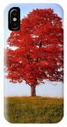 Autumn Flame IPhone Case
