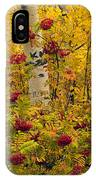 Autumn Forest Colors IPhone Case
