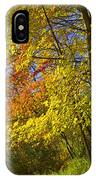 Autumn Forest Scene In West Michigan IPhone Case