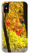 Autumn Forest Scene IPhone Case