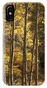 Autumn Forest Scene With Birches In West Michigan IPhone Case