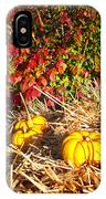 Autumn Garden IPhone Case