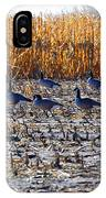 Autumn Geometry By Jrr IPhone Case