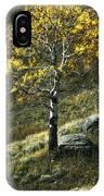 Autumn Glow - Yellowstone IPhone Case