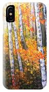 Autumn Glow IPhone Case