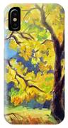 Autumn Gold Yosemite Valley IPhone Case