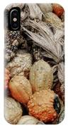 Autumn Gourds 2 IPhone Case