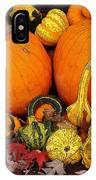 Autumn Harvest 5 IPhone Case