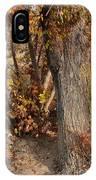Autumn Hideaway IPhone Case