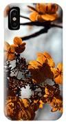 Tardiva Hydrangea IPhone Case