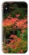 Autumn In Mount Rainier Forest IPhone Case