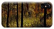Autumn In Vail - Colorado IPhone Case