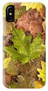 autumn is coming 5 - A carpet of autumn color leaves  IPhone Case