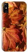 Autumn Leaves 00 IPhone Case