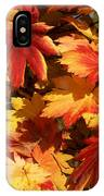 Autumn Leaves 09 IPhone Case