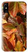 Autumn Leaves 81 IPhone Case