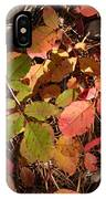 Autumn Leaves And Needles IPhone Case