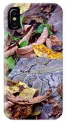 Autumn Leaves In Creek Bed IPhone Case