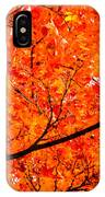 Glorious Autumn Leaves IPhone Case