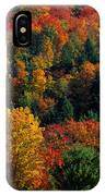 Autumn Leaves Vermont Usa IPhone Case