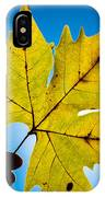 Autumn Maple Leaf In The Sun IPhone Case