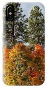 Autumn Maple With Pines IPhone Case