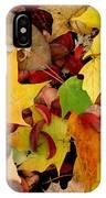 Autumn Moods 19 IPhone Case
