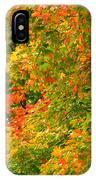Autumn Mosaic Nj IPhone Case